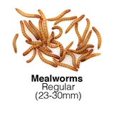 RSPB Garden Bird Watch Special Offer - 1kg Reg Mealworms