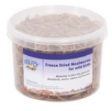 Mealworms Dried 500ml