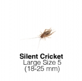 Silent Cricket Large Tub of 80-100 Size 5 18-25mm