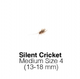 Silent Crickets Medium Tub of 100-125 Size 4 13-18mm
