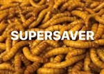 Mealworms Small Regular 250g Weekly - SUPERSAVER