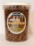 Mealworms Dried 10 litres