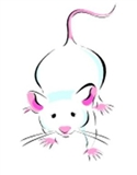 Mice Medium  (10-15g) - 100 (CAT 3 ABP) (Z)