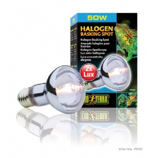 Exo Terra Halogen Bulbs